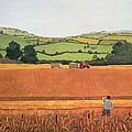 Harvesting In The Cotswolds by Maggie Rowe