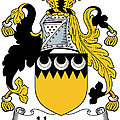 Harvey Coat Of Arms Irish by Heraldry