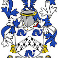 Hasset Coat Of Arms Irish by Heraldry