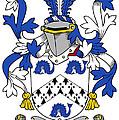 Hassett Coat Of Arms Irish by Heraldry