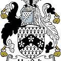 Hatfield Coat Of Arms Irish by Heraldry