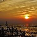 Hatteras Island Sunrise 1 7/31 by Mark Lemmon