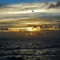 Hatteras Island Sunrise 2 9/10 by Mark Lemmon