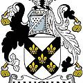 Haughan Coat Of Arms Irish by Heraldry