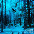 Haunting Dark Blue Surreal Woodlands With Crow  by Kathy Fornal