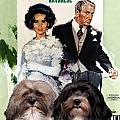 Havanese Art - Father Of The Bride Movie Poster by Sandra Sij