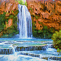 Havasu Falls by David Wagner