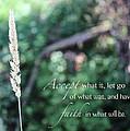 Have Faith by Bailey Barry