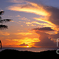 Hawaian Sunset  by Les Palenik