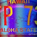 Hawaii Aloha State by Dorlea Ho