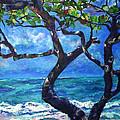 Hawaii by Art by Kar