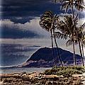 Hawaii Big Island Coastline V3 by Douglas Barnard