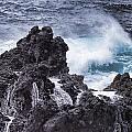 Hawaii Big Island Coastline V4 by Douglas Barnard