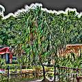 Hawaii Plantation by John Watson