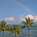 Hawaii Rainbow by Peggy Collins