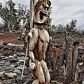 Hawaii Sculptures V2 by Douglas Barnard