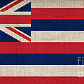 Hawaii State Flag  by Pixel Chimp
