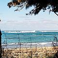Hawaiian Beach by Jason Picard