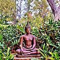 Hawaiian Garden Buddha  by Bob Kinnison