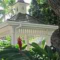Hawaiian Gazebo by Elaine Haakenson