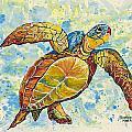 Hawaiian Sea Turtle 2 by Darice Machel McGuire