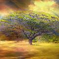 Hawaiian Tree by Claude LeTien