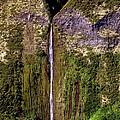 Hawaiian Waterfall by Eric Swan