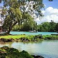 Hawaiian Landscape 5 by D Preble