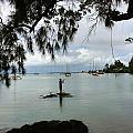 Hawaiiana 33 by D Preble