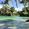 Hawaiian Landscape 4 by D Preble