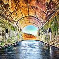 Hawk Hill Tunnel by Robert Rus