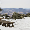 Hawk Mountain Bench by Jay Ressler