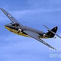 Hawker Sea Hawk Fga6 by Andrew Harker