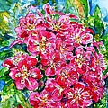 Hawthorn Blossom by Zaira Dzhaubaeva
