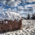 Hay Bale In The Snow by Larry Braun