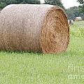 Hay Bale by Mark McReynolds