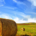 Hay Bales 2 by Dominic Piperata