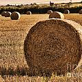Hay Bales 2 by Steve Purnell
