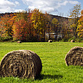 Hay Bales And Fall Colors by Christina Rollo