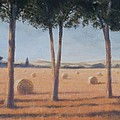 Hay Bales And Pines, Pienza, 2012 Acrylic On Canvas by Lincoln Seligman