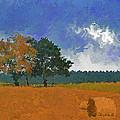 Hay Bales by Diane Macdonald