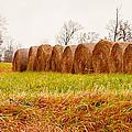 Hay Bales by Melinda Pettery