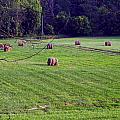 Hay Field by Chris Flees