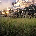 Hay Field Sunset by Bill Wakeley