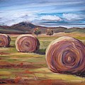 Hay Harvest by Donna Tuten