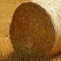 Hay In The Field by Jeelan Clark