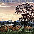 Hay Morning by Ben Yassa