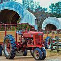 Hay Rides Trailer by Alex Grichenko