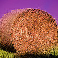 Hay Roll by Dany Lison