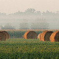 Haybales by Sarah Boyd